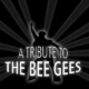 A Tribute to The Bee Gees in Gaggenau bei Toni rockt